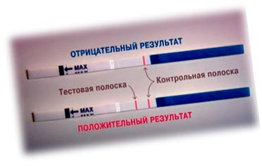 Как проверить беременность с тестом